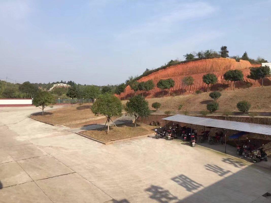 湖南养鸡厂